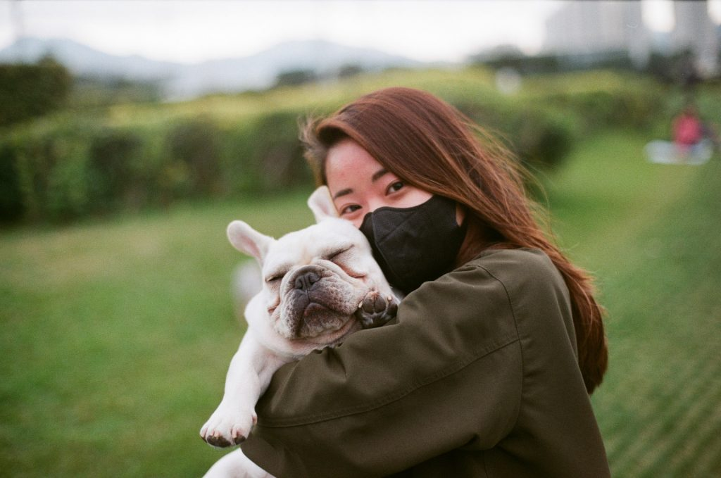 French Bulldogs for sale in Washington