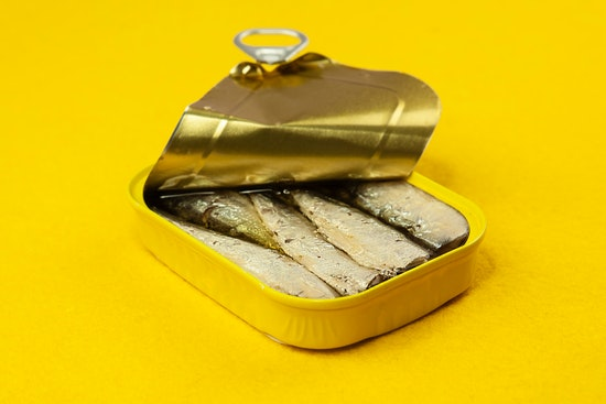 Should Your Allergic Dogs Eat Sardines