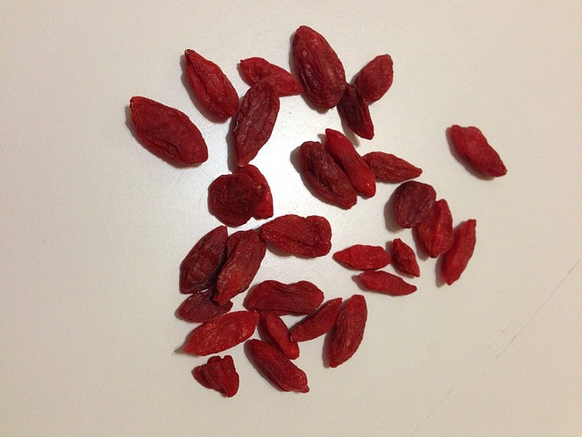 HEALTH BENEFITS ARE GOJI BERRIES GOOD FOR DOGS